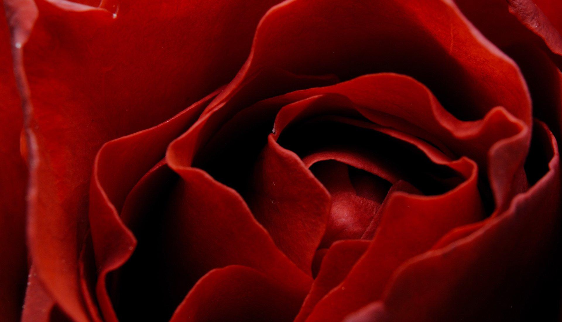 一覺醒來被自己嚇一跳,臉上一粒一粒紅紅的是怎麼回事?