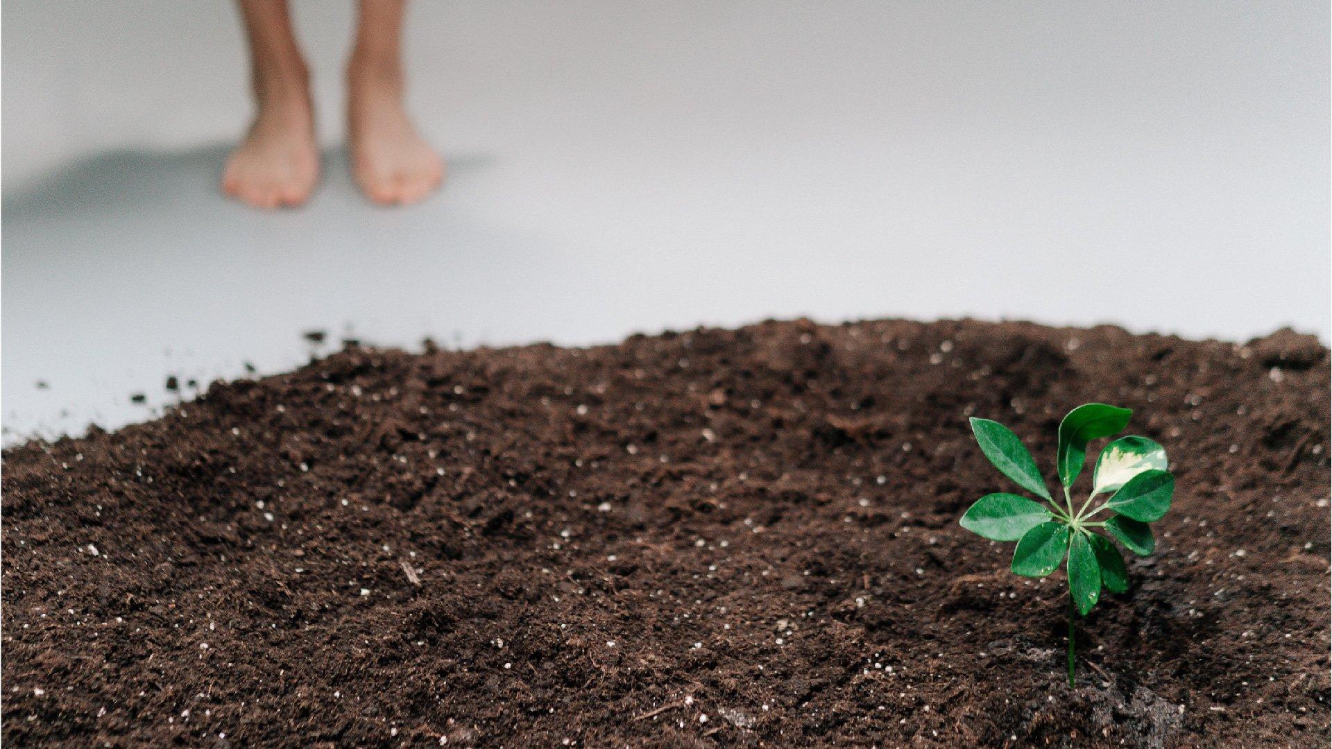 每個人都要減少碳足跡,讓地球降溫即刻救援,你開始了嗎?